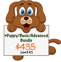 Advanced Puppy Bundle